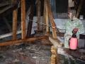 Борьба с древесными вредителями